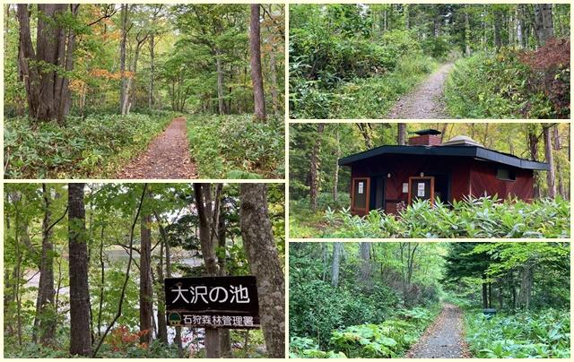 野幌森林公園色々